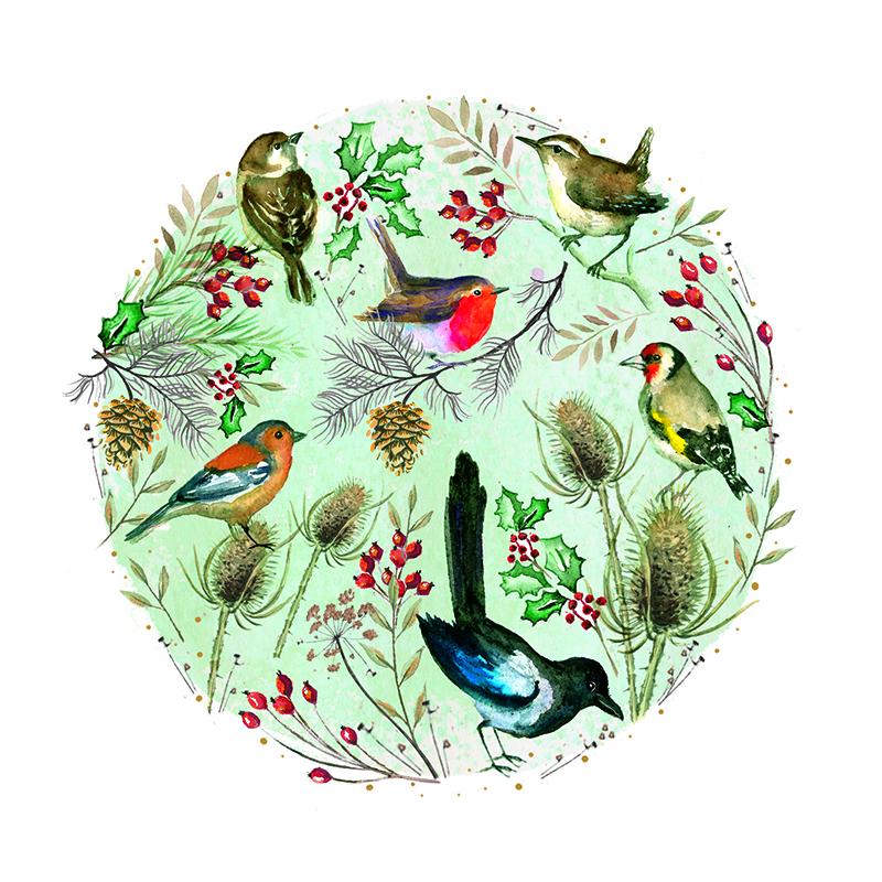 cg winter garden birds amend