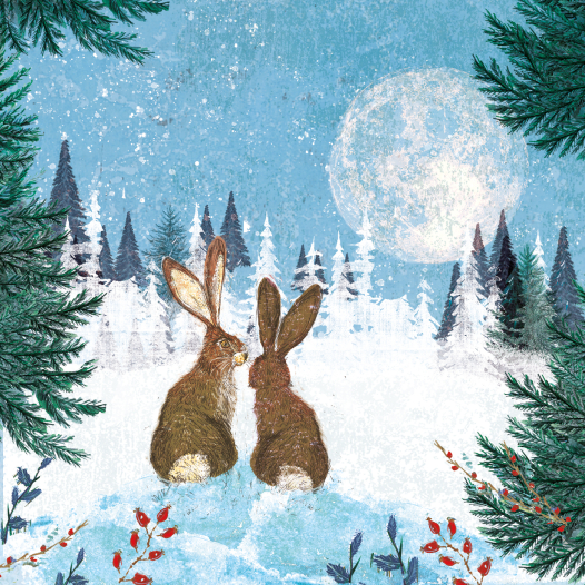 kw. hares looking at moon website